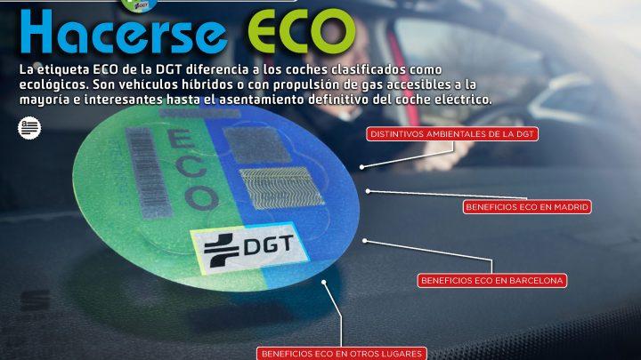 Pasito a pasito… el futuro del automóvil es ECO